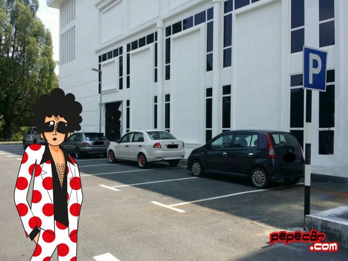 aparcar mal - pepecar
