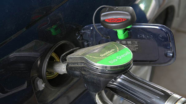 alquiler de coches con pepecar - manguera gasoil